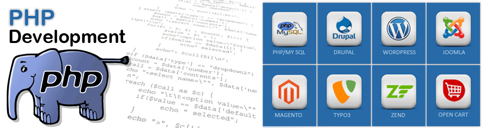 PHP Website Development