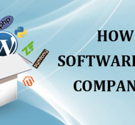 How Is Custom Software Development Company Beneficial